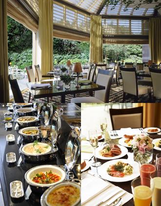 IMG:2010年、新年に訪れたいレストラン