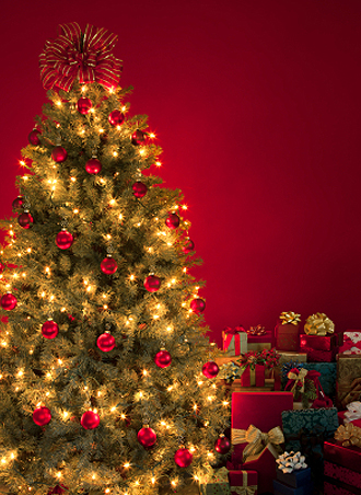 IMG:アメリカに習いつつ日本流も楽しむ/クリスマスツリー