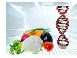 遺伝子組み換えイメージ