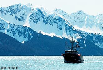 IMG:アラスカ産サーモンの魅力(イメージ)
