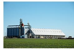 カリフォルニアの米農場(イメージ)