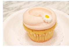 バニラカップケーキ