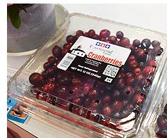 Dragonberry Produceのクランベリー
