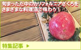 特集記事/旬まっただ中のカリフォルニアざくろをさまざまな料理法で味わう!